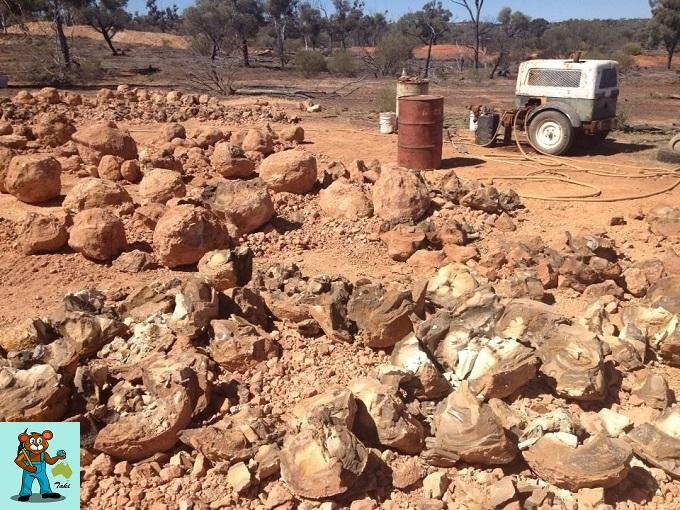 ボルダーオパール鉱山確認作業